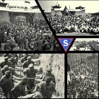 Holokaustoaren biktimak oroitzeko ekitaldia urtarrilaren 27an, Berdura plazan