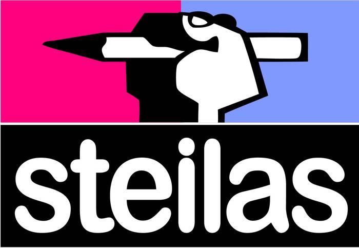 Hezkuntza Sailburuak eginiko prentsaurrekoaren harira Steilas sindikatuaren oharra